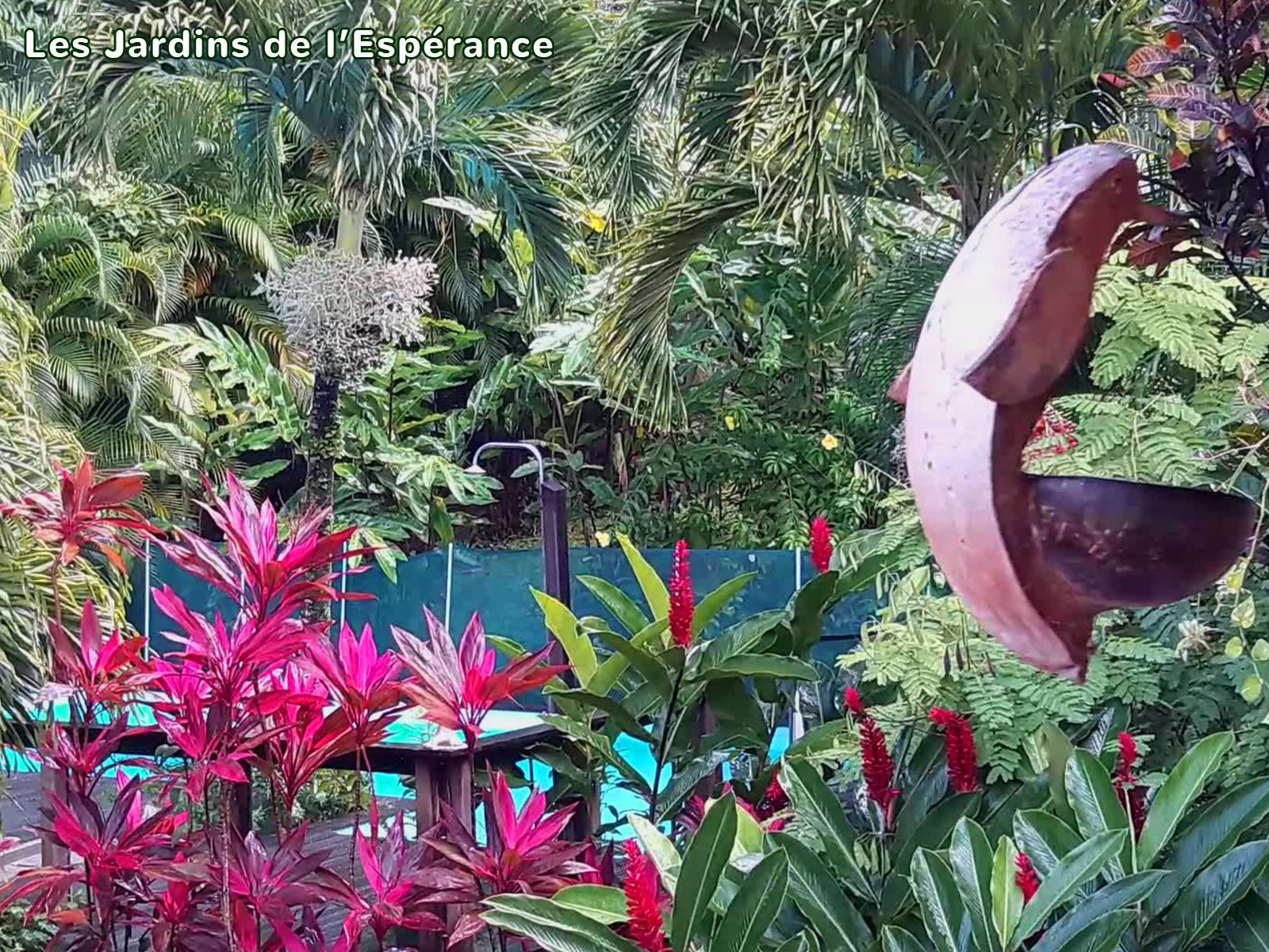 Les Jardins de l'Espérance - Jardin créole