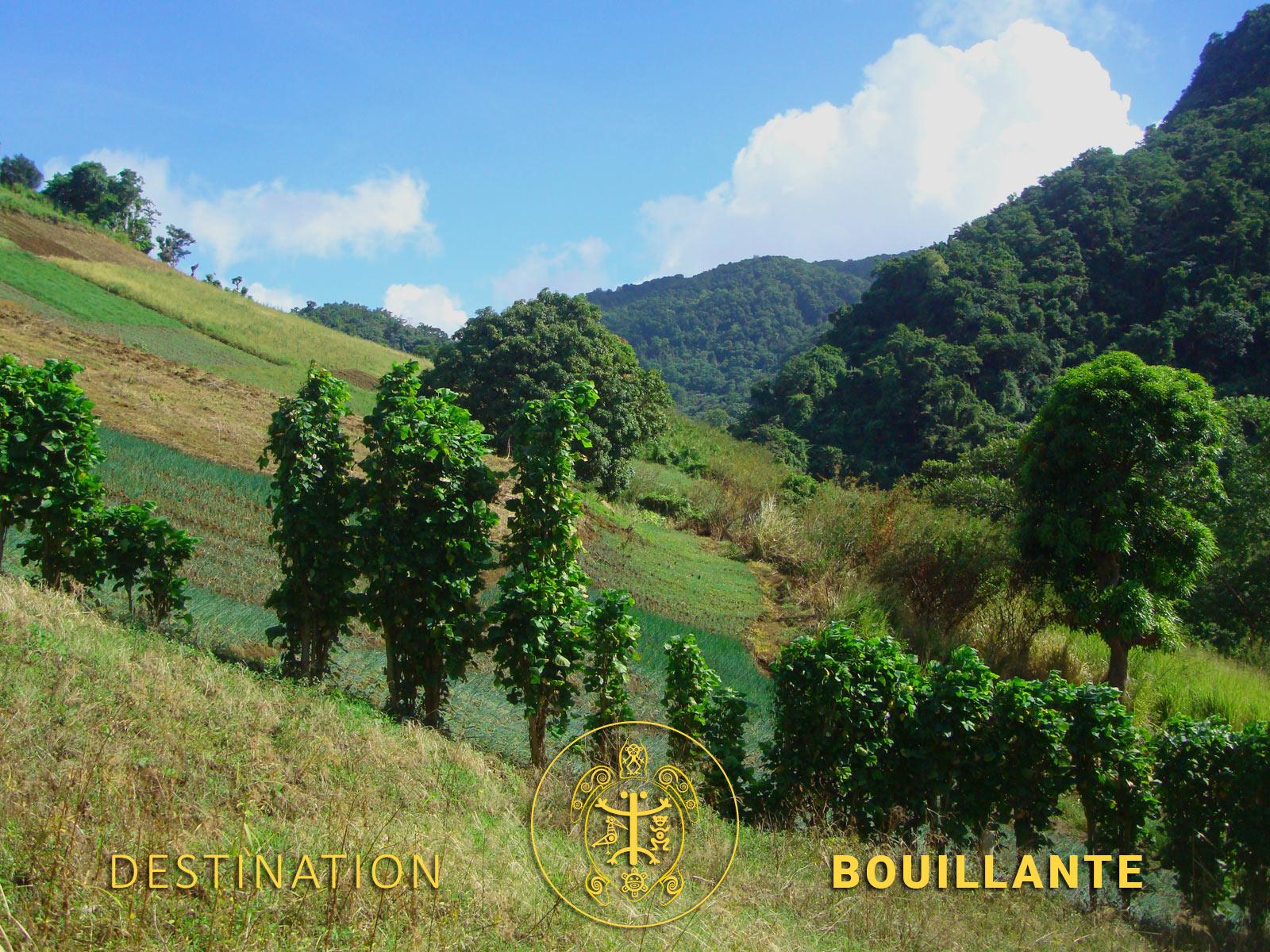 Basse-Terre - Montagnes de Guadeloupe