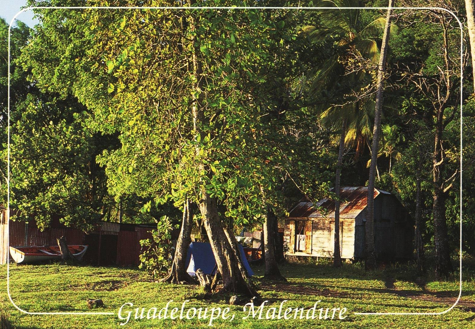 Plage de Malendure - Bouillante