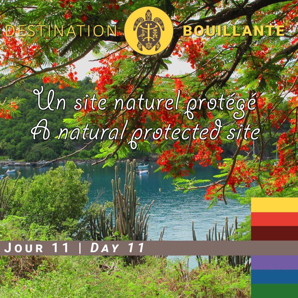 Un site naturel protégé