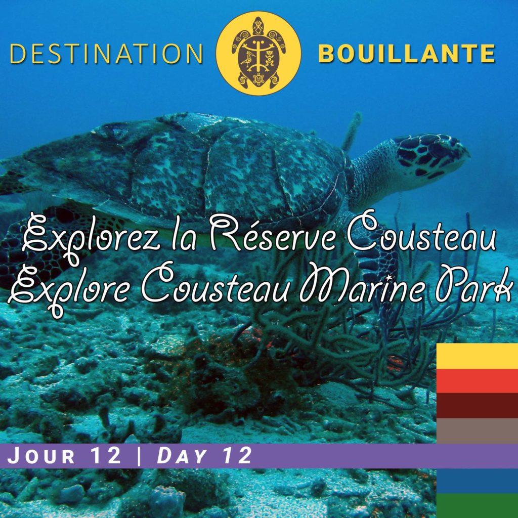 Explorer la Réserve Cousteau